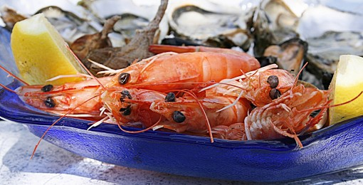 shrimp-1502724_1920